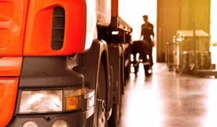 Acostumbrados a las Sanguijuelas - Editorial Transportealdia